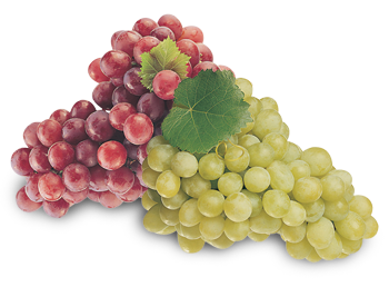sidegrapes